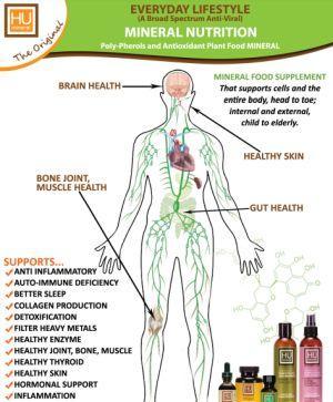 MICRONUTRIENTS: Vitamins & MINERALS
